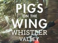 Pigs on the Wing with BCpov