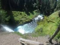 McKenzie River Mountain Bike Trail - Oregon 2015