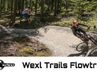Full Run at Wexl Flow Line