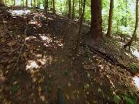 Smedley Park - Ridge Trail