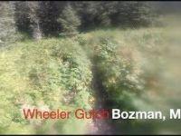 Mountain Biking Bozeman Montana, Wheeler Gulch...