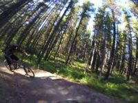 Moose Mountain: Downhill biking 7-27 Trail...