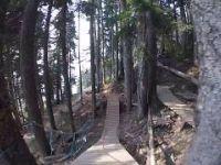Whistler Bike Park - No Joke (upper) - Summer...