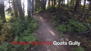 Whistler Bike Park - Goats Gully - Raw -...