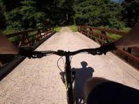Fair Hill MTB Yellow Trail
