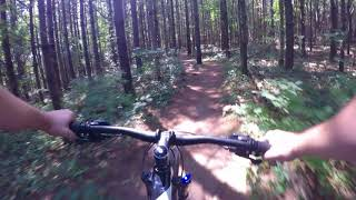 Radial Single Track - Smith Property Hiking Loop
