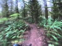 Mountain Biking Lord Hill Regional Park -...