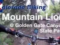 Mountain Lion Descent   Mountain Biking at...