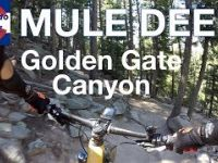 Mule Deer Descent | Mountain Biking at Golden...