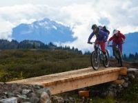 Whistler Biking: Lord of the Squirrels Trail