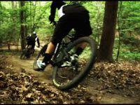 Ride Center Rip