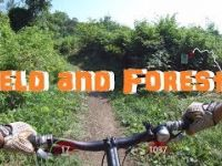 Kelso MTB Rider - Field and Forest Segment