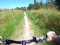 Lindsay Tract MTB Trail - Wetland Loop