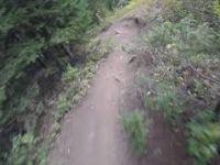 Thief's Forrest @Deer Valley Bike Park...