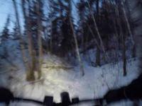 Ewok trail