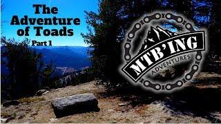 Tahoe Rim Trail, Freel Meadow (South Lake...