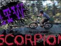 One Trail Wonder: Scorpion