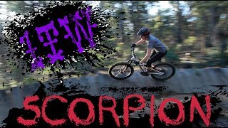 One Trail Wonder: Scorpion
