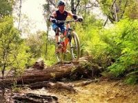Peaking Ridge Trail, Nelson, New Zealand