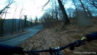 Let's Ride MTB - Heidelberg //...