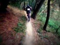 Naucna trail