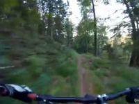Let's Ride MTB - Heidelberg // Königstuhl...