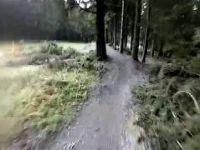 Hahenklee Flowtrail