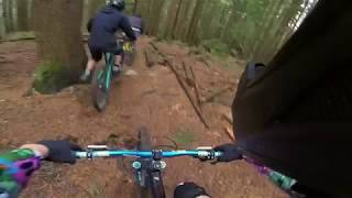 Big Stupid - Mount Fromme, North Shore