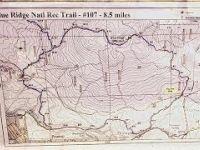 Blue Ridge Trail- Arizona Mountain Bike Trail