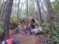 Squamish Enduro MTB Trails Alice Lake - Credit...