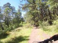 Joe's Berms and Swipe Right - Partridge Hills
