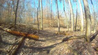 Lakeview Trail - Mountain Biking
