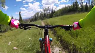 Brian Head Resort Descender (flow trail) Aug....