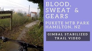 Blood, Sweat & Gears - Pukete Farm Park,...