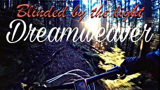 Dreamweaver Trail(Scott Genius)