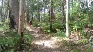 Phoenix Jump Parklands MTB Trails