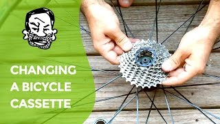 How to change a bicycle cassette