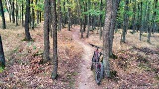 Trail Holedná (stezka vhodná pro MTB, Brno)
