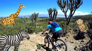 THE MOUNTAIN BIKE SAFARI | Riding in Hell's...