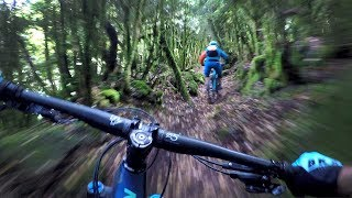 THE UNREAL EMERALD FOREST | Mountain Biking...
