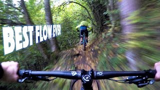 MY NEW FAVORITE FLOW | Mountain Biking the...