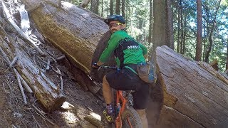 Bringing old Downieville trails back to life...