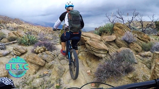 EPIC IN THE DESERT   Palm Canyon Part 1, SoCal...