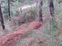 יונתן במשמר העמק