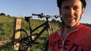Crockett Hills cow damage update
