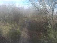 steeple downhill run