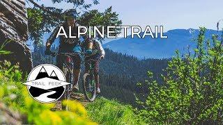 Fern Freeway - Alpine Trail  - Mountain Biking...