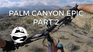 Palm Canyon EPIC - Part 2