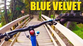 Blue Velvet GoPro DH MTB - Whistler Mountain...