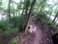 Part of the Roanoke Trails